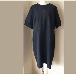 NWOT Eloquii Dress Black S/S Polyester Stretch 20